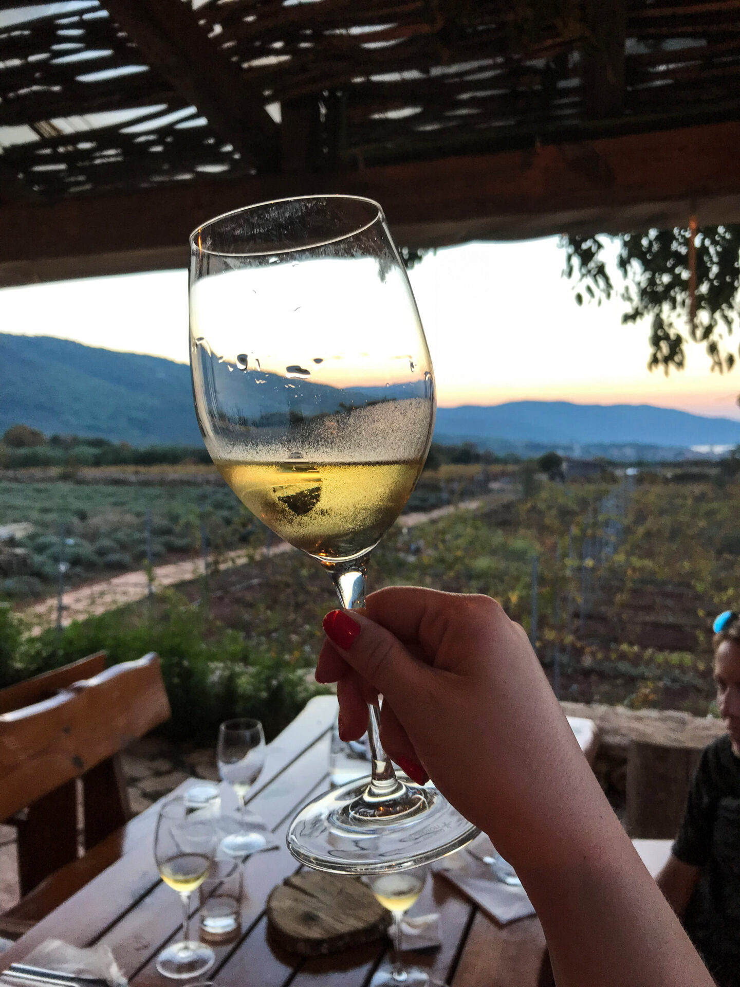visit croatia and go wine tasting at Hora Farm, Hvar