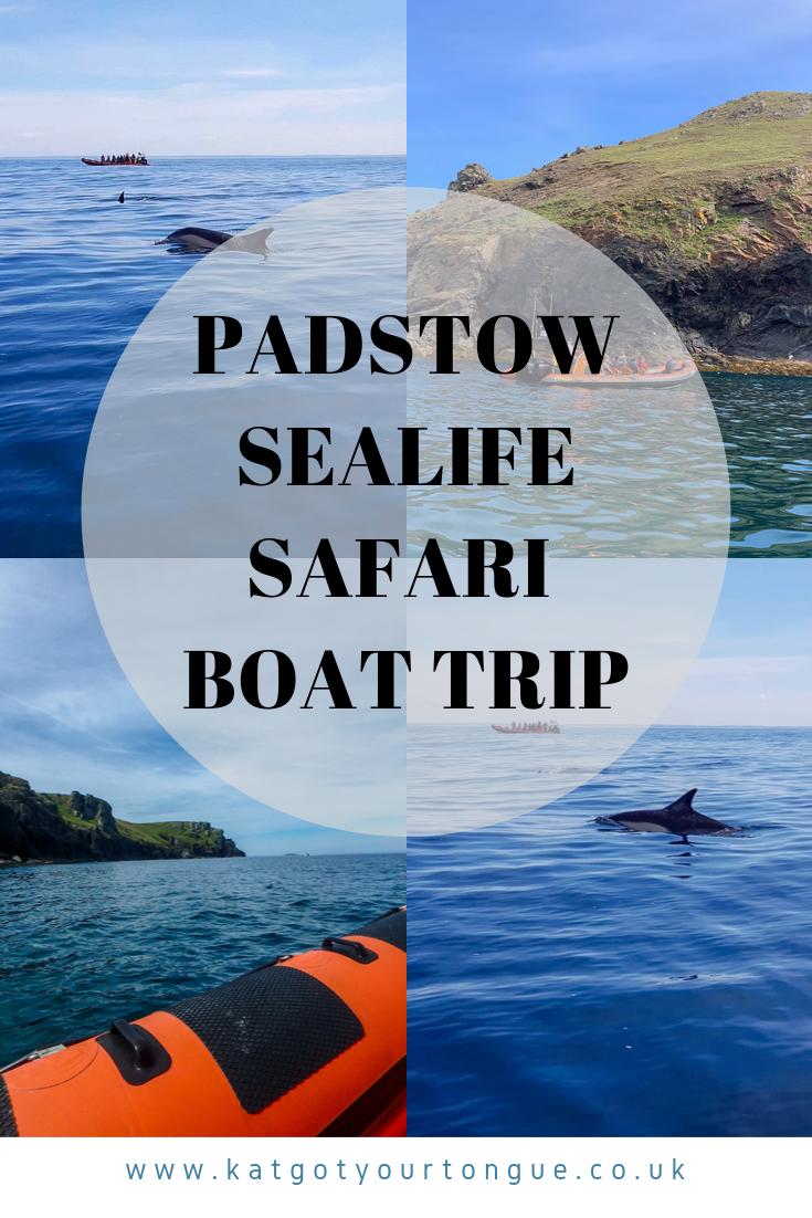 Padstow Sealife Safari Boat Trip, Cornwall